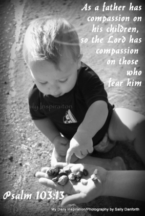 Image result for The Lord' Compassion