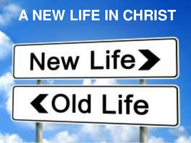 Image result for A new life in Christ